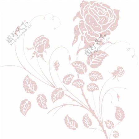 紫色玫瑰花纹
