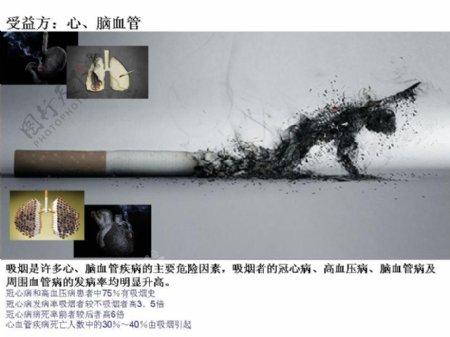 禁烟宣传PPT模板