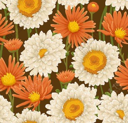 大花朵图片