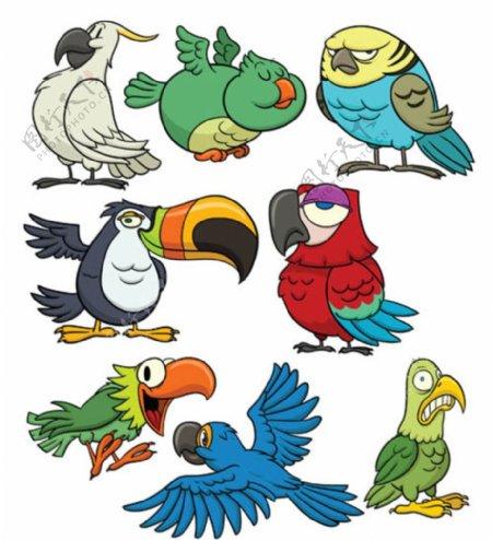卡通鹦鹉图片
