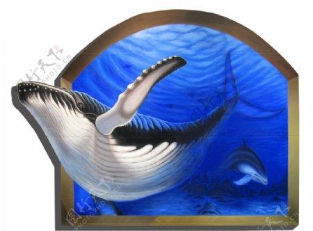 大鲸鱼图片