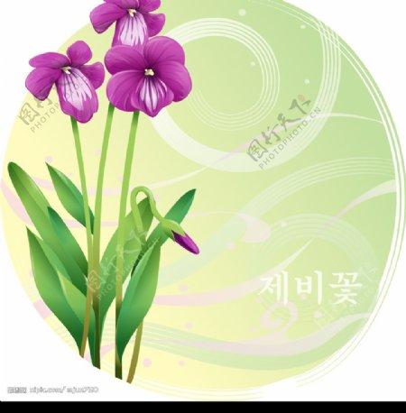 紫色小花图片