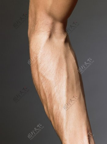 高清人体艺术图片