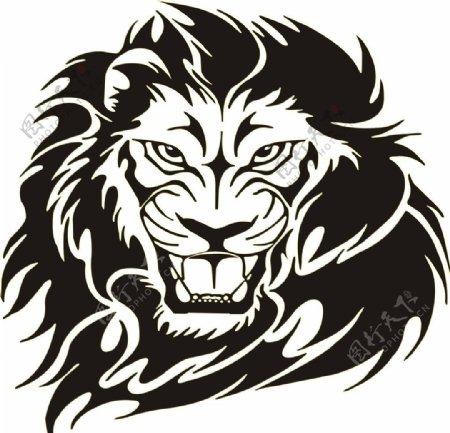 矢量狮子生物世界野生动物矢量图库图片