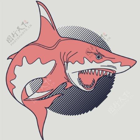 手绘鲨鱼矢量图下载