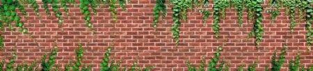 爬山虎砖墙贴图