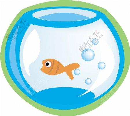金鱼金鱼缸