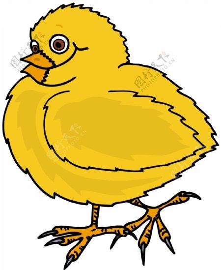 家禽家畜动物矢量素材EPS格式0041