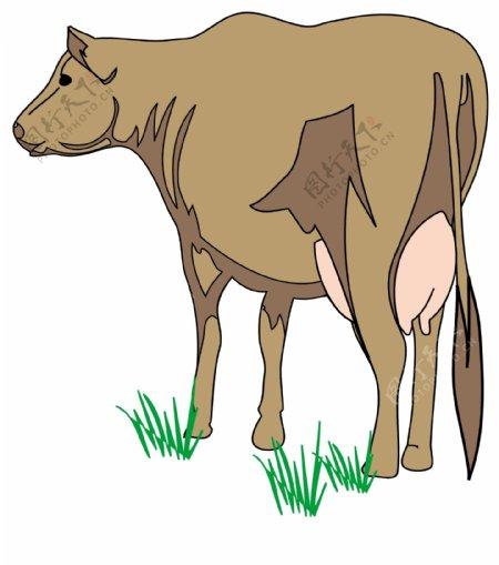 家禽家畜动物矢量素材EPS格式0111