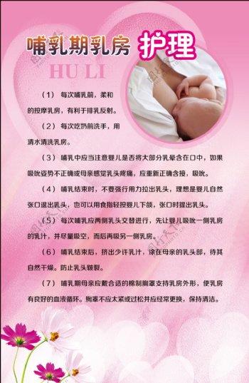 哺乳期乳房护理