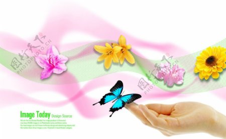 蝴蝶花朵小清新梦幻背景素材
