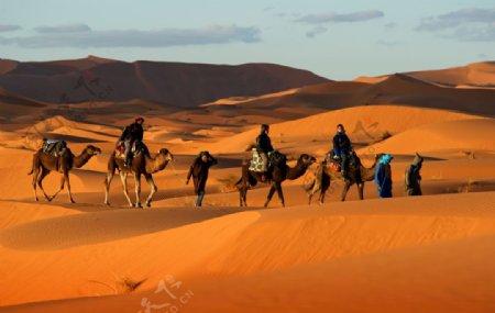 骆驼黄昏人物摄影沙漠