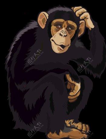 猴子透明底图素材