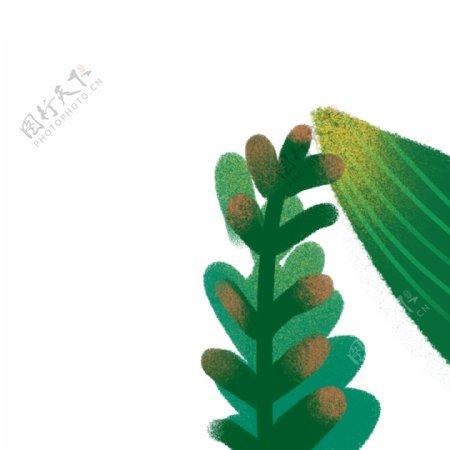 卡通植物叶子免扣图