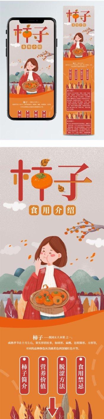 柿子食用介绍信息长图