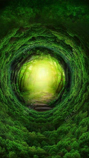 创意绿色森林H5背景