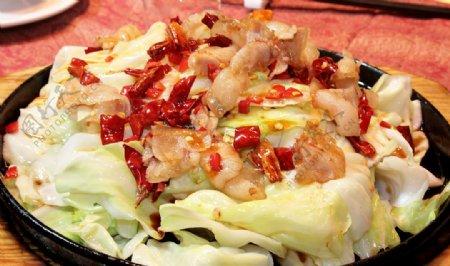 铁板卷心菜