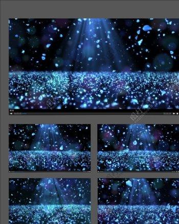 唯美粒子花瓣蓝光视频素材