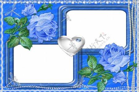 相框蓝玫瑰