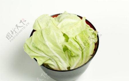 包菜卷心菜
