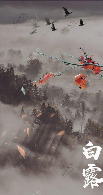 白露节气PSD海报图片