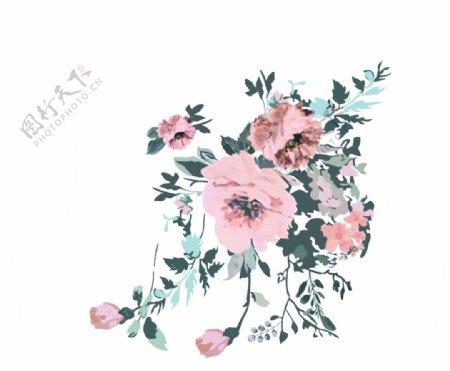 玫瑰月季牡丹图片