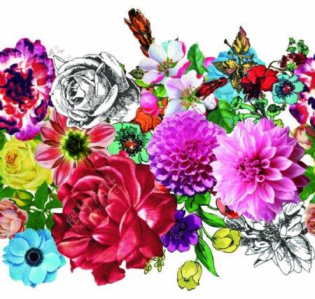 手绘花卉定位图片