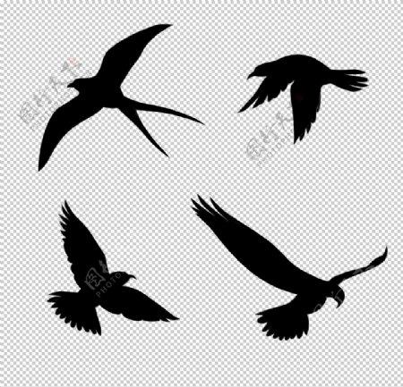 燕子鸽子剪影插画卡通海报素材图片