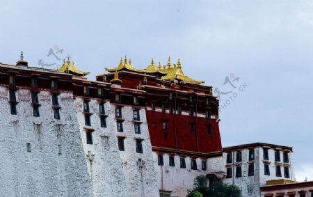 西藏拉萨布达拉宫金顶图片