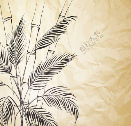 竹子背景植物图片