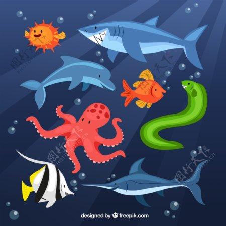 卡通海洋动物矢量图片