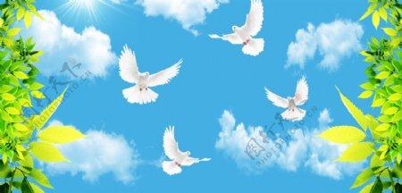 蓝天白云鸽子图片