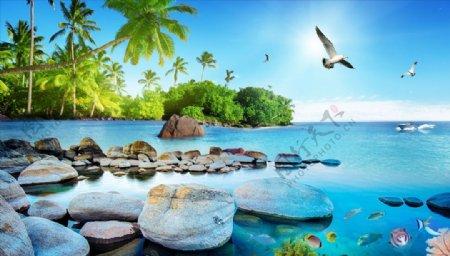 海边椰树鸽子背景墙图片