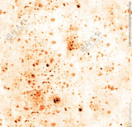 数码印花匹布面料设计豹纹图片