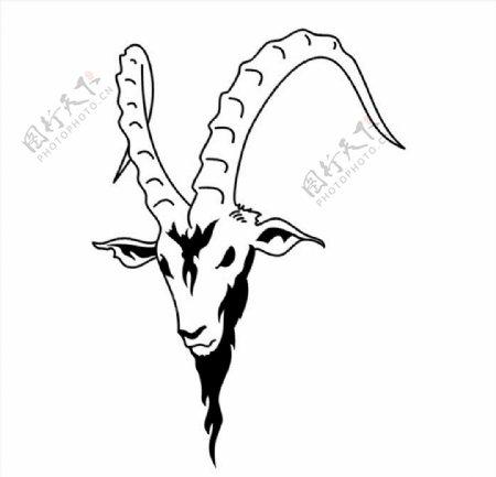 山羊头像CDR矢量图图片