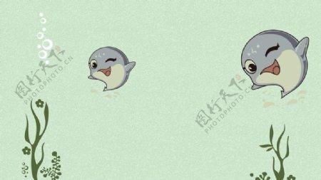 小海豚海底世界图片