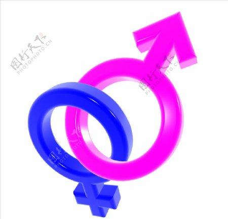 C4D模型男女性标志符号图片