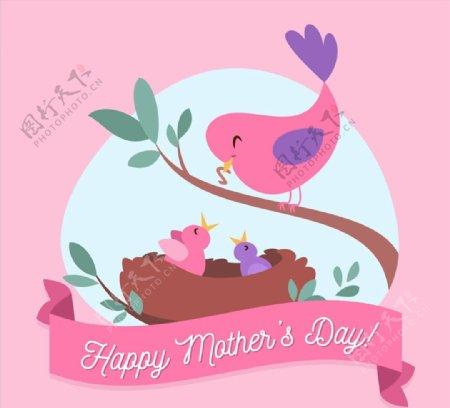 母亲节喂食的鸟图片