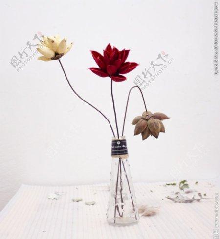 花瓶里的荷花拍摄素材图片
