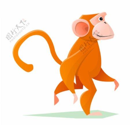 猴子插画图片