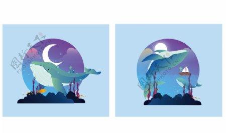 海豚矢量插画图片