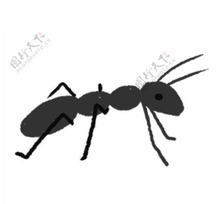 手绘插画蚂蚁图片