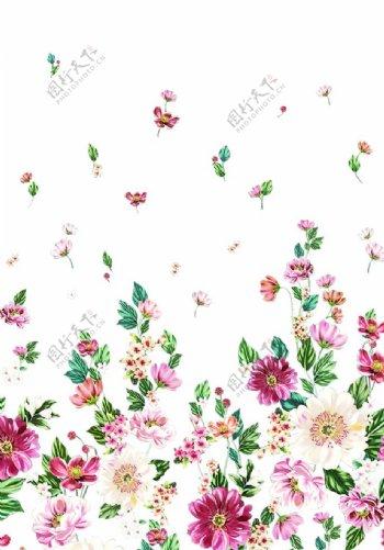 小碎花定位花图片
