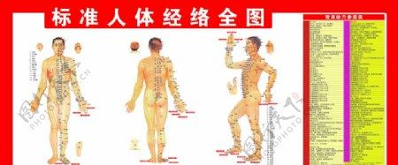 人体经络全图参照表图片