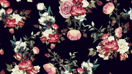 手绘花朵图片