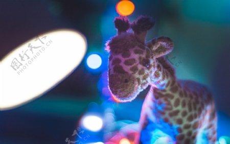 毛绒玩具长颈鹿图片