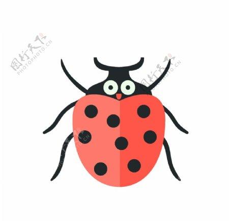 矢量手绘瓢虫图片