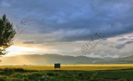 新疆草原图片