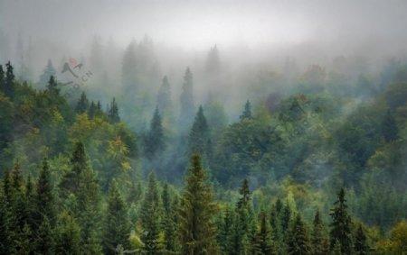 风景壁纸图片
