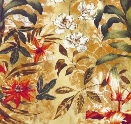 美式花朵植物装饰画图片